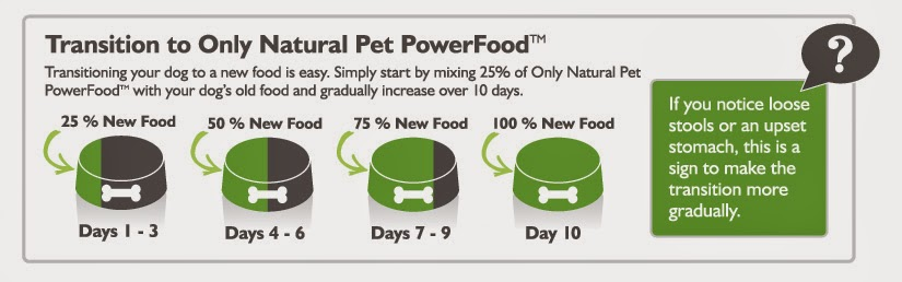 Transitioning Your Dog To A New Pet Food Canine